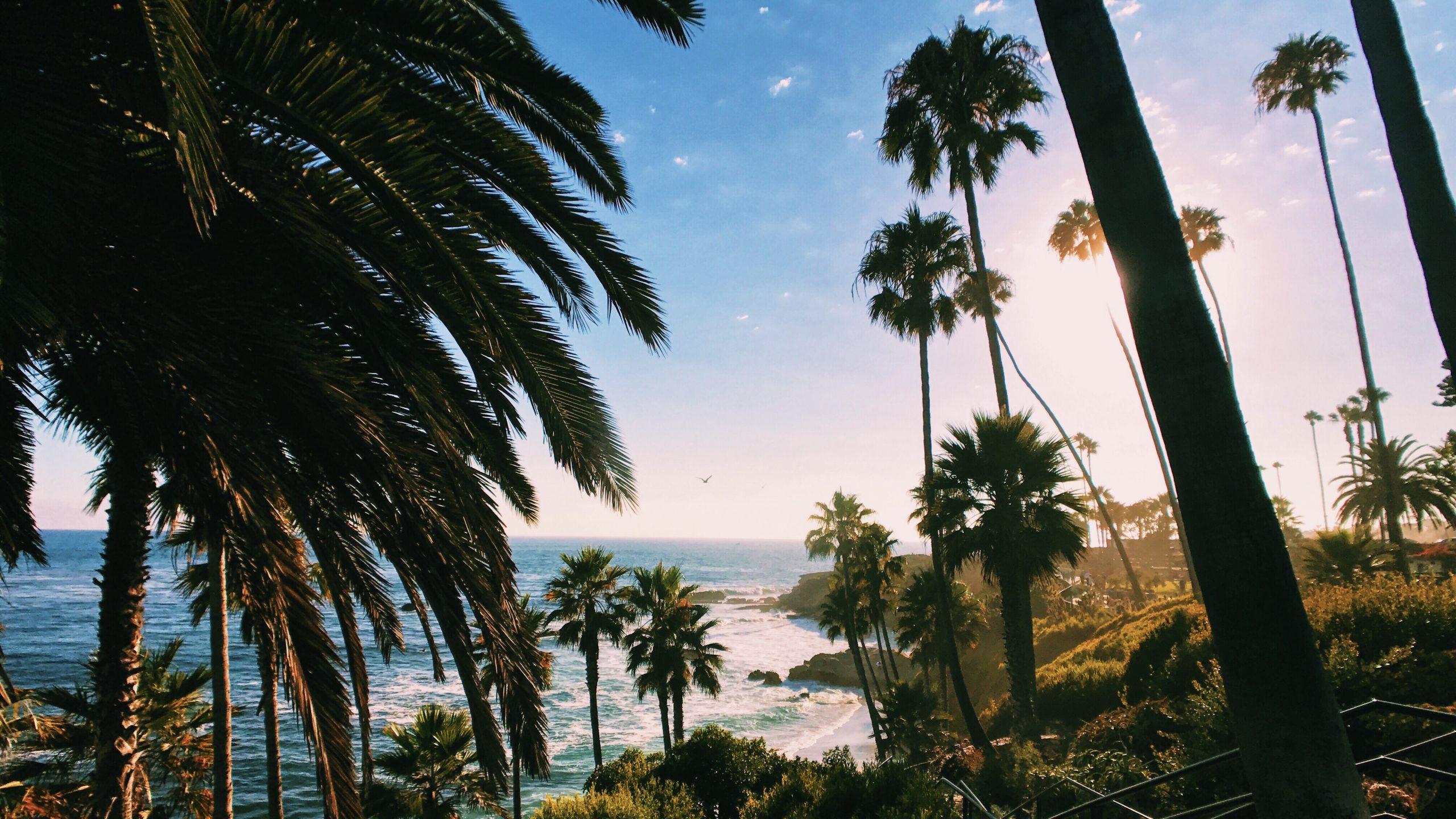California Conditional Use Permit